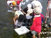 川の水質調査・船小屋中ノ島